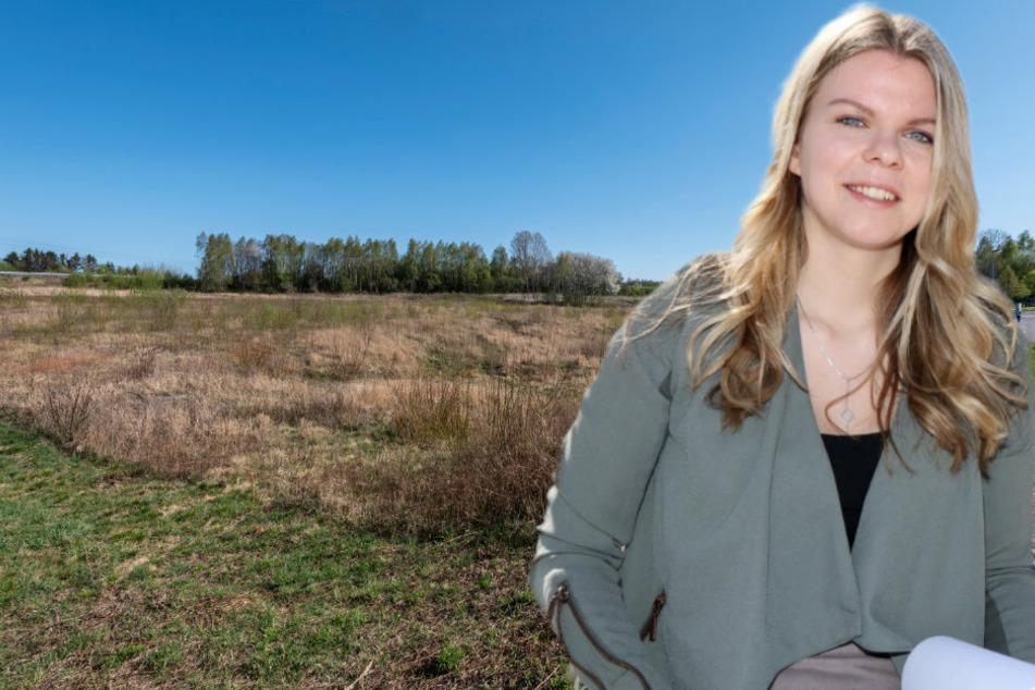 Studie der WHZ enthüllt: Neues Holzkraftwerk schadet Mensch, Wald & Klima
