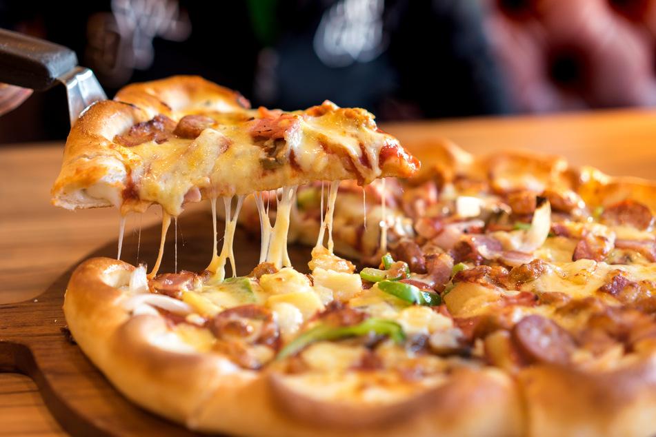 Auf Pizza hatte der Bär gehofft, bekommen hat er keine. (Symbolbild)