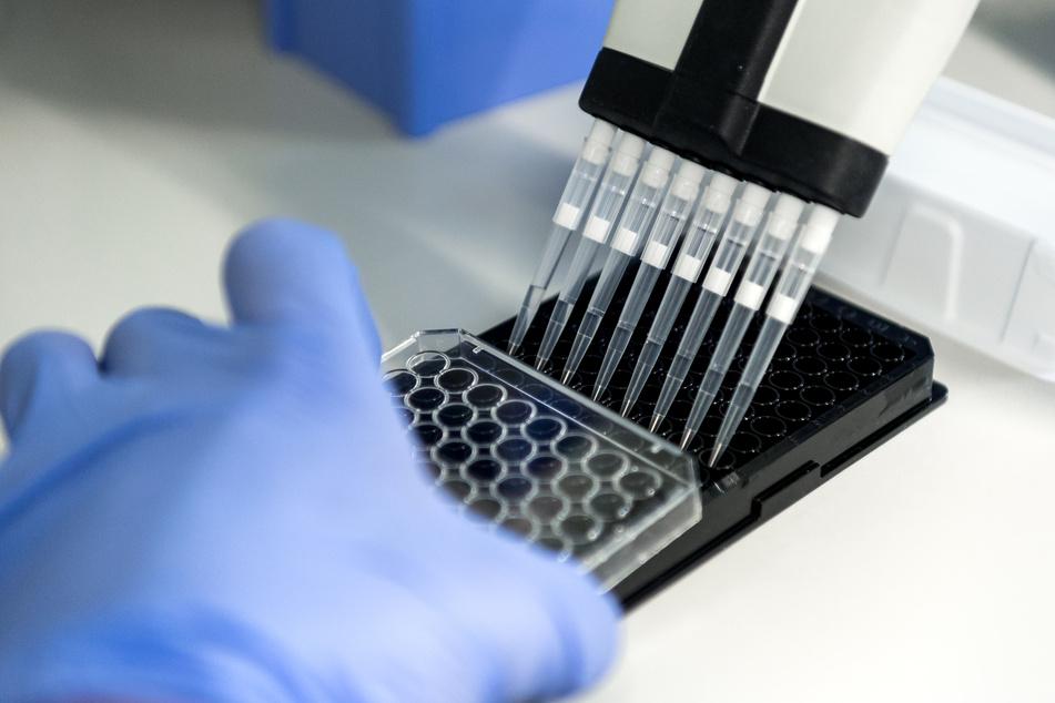 Nicht zugelassenes Krebsmittel verkauft: Biologe vor Gericht!