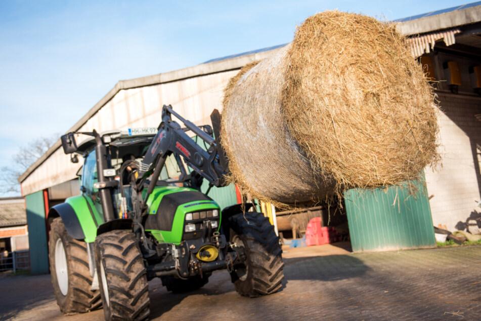 Mit einem Aktionsplan will die Landesregierung den Öko-Landbau stärken. (Symbolbild)