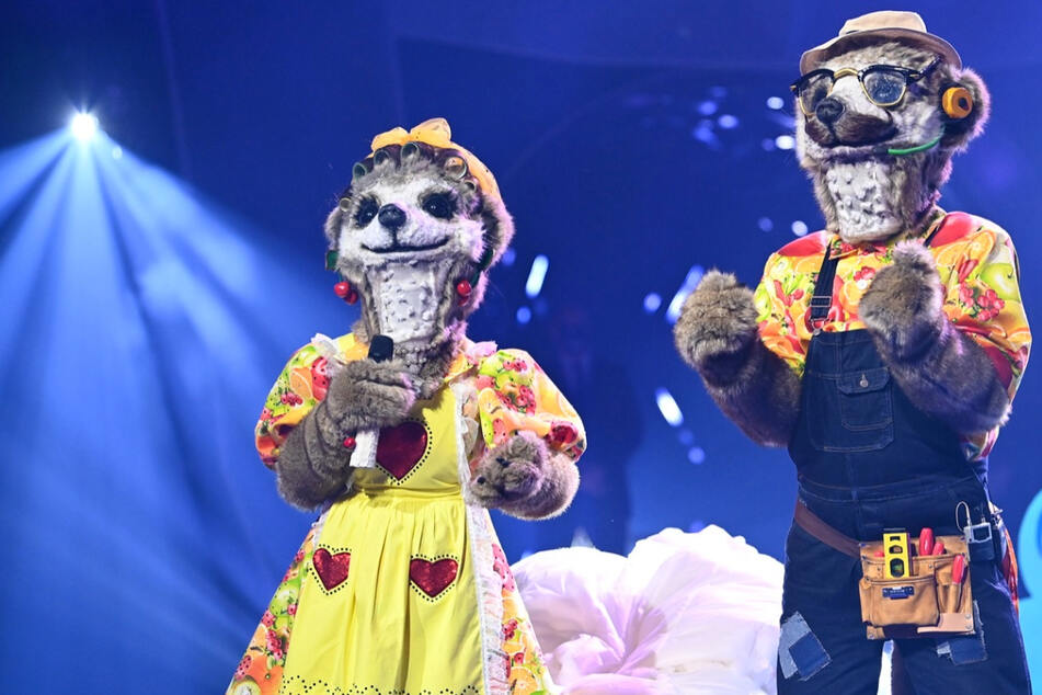 """Promi-Paar bei """"The Masked Singer"""" enttarnt? Stecken hinter den Erdmännchen in Wahrheit..."""