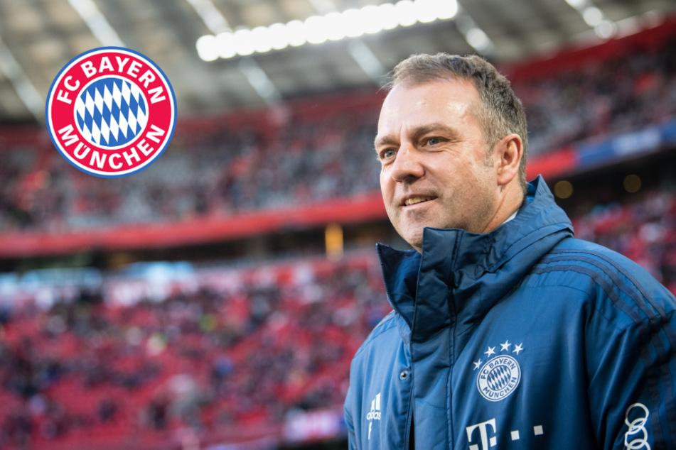 Rätsel auf FC-Bayern-Homepage: Hat Hansi Flick bereits bis 2021 verlängert?