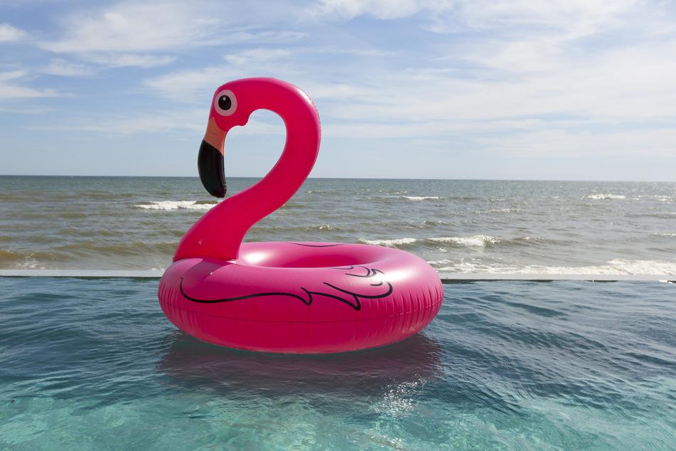 Auf einem aufblasbaren Gummi-Flamingo hatte der Mann den Rhein in Bonn überquert. (Symbolbild)