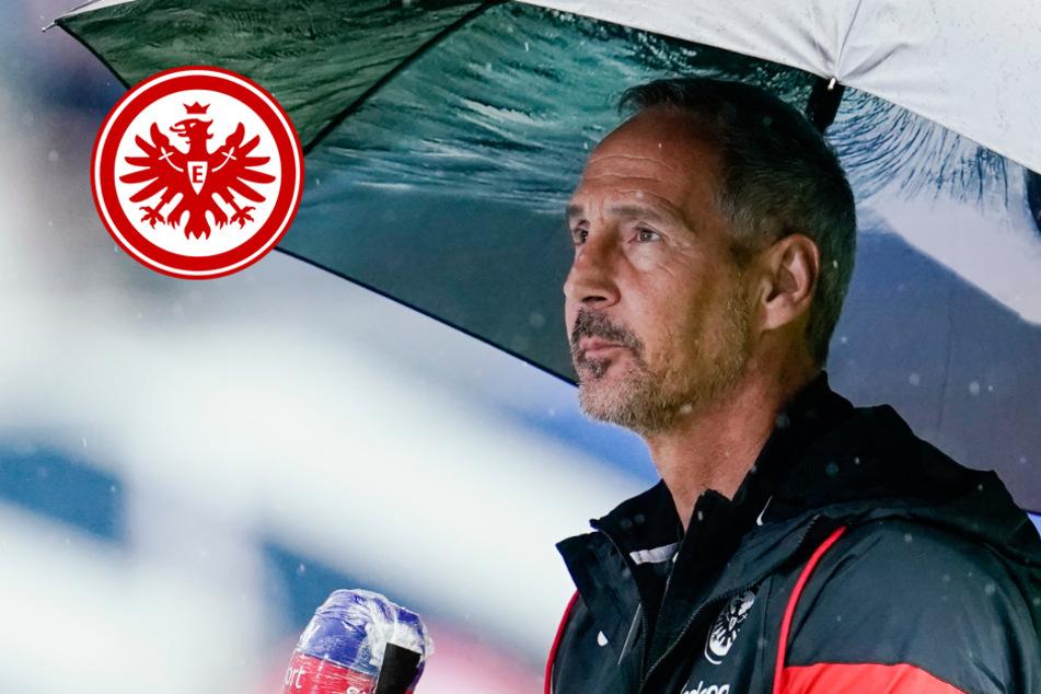 Eintracht Frankfurt verliert Test gegen Würzburg
