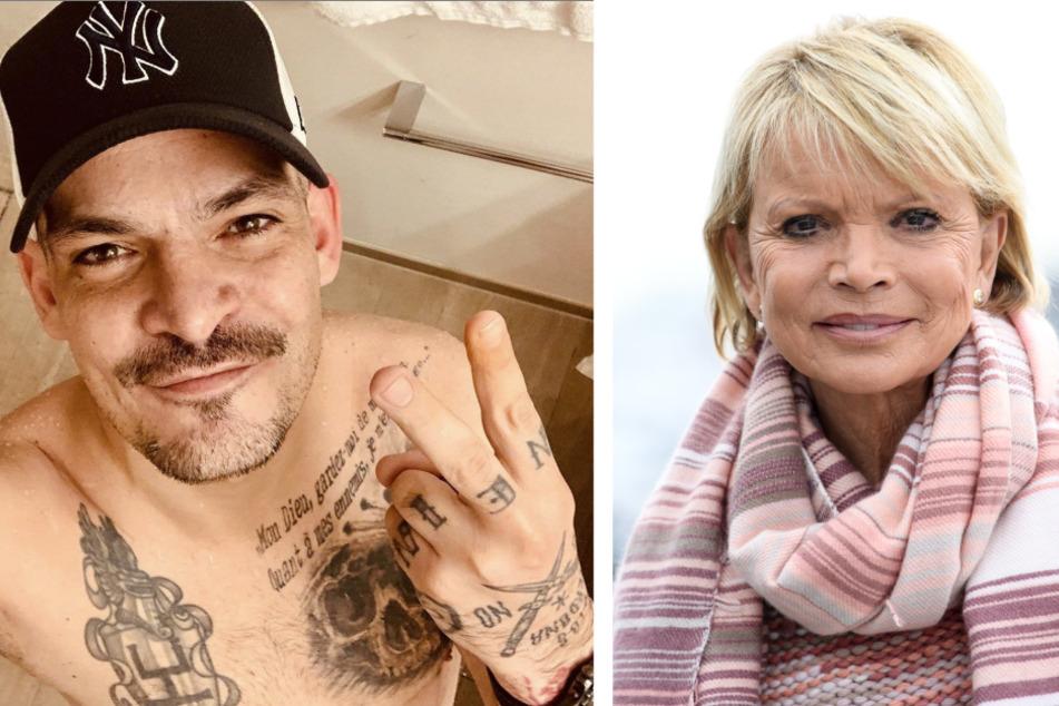 Schauspielerin Uschi Glas (76) hat ihrem Sohn Ben Tewaag (44) unterstellt, ihre Tochter Julia sexuell misshandelt zu haben.