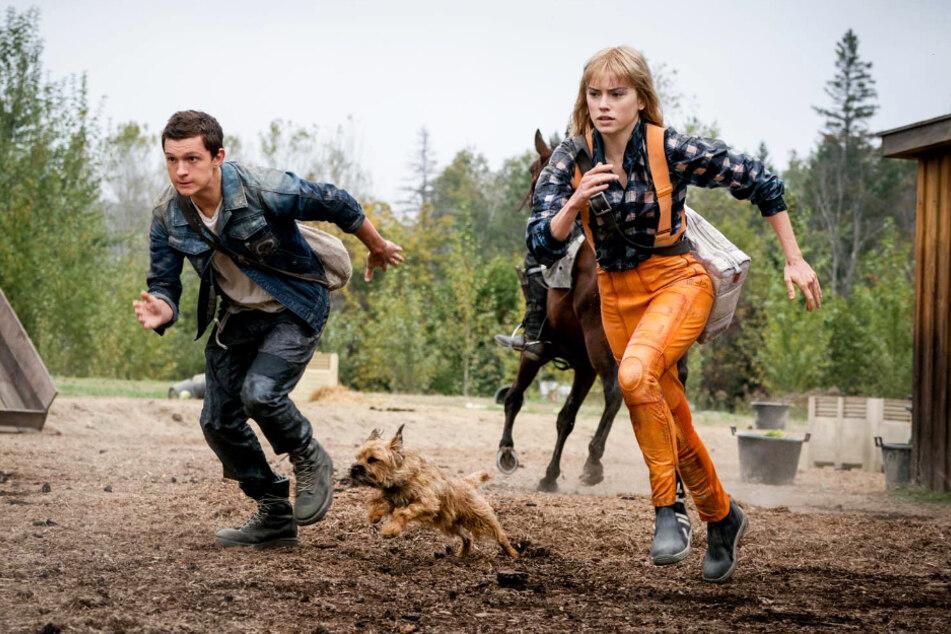 Todd Hewitt (Tom Holland; l.) und Viola Eade (Daisy Ridley) müssen sich gemeinsam in einer gefährlichen dystopischen Welt behaupten.