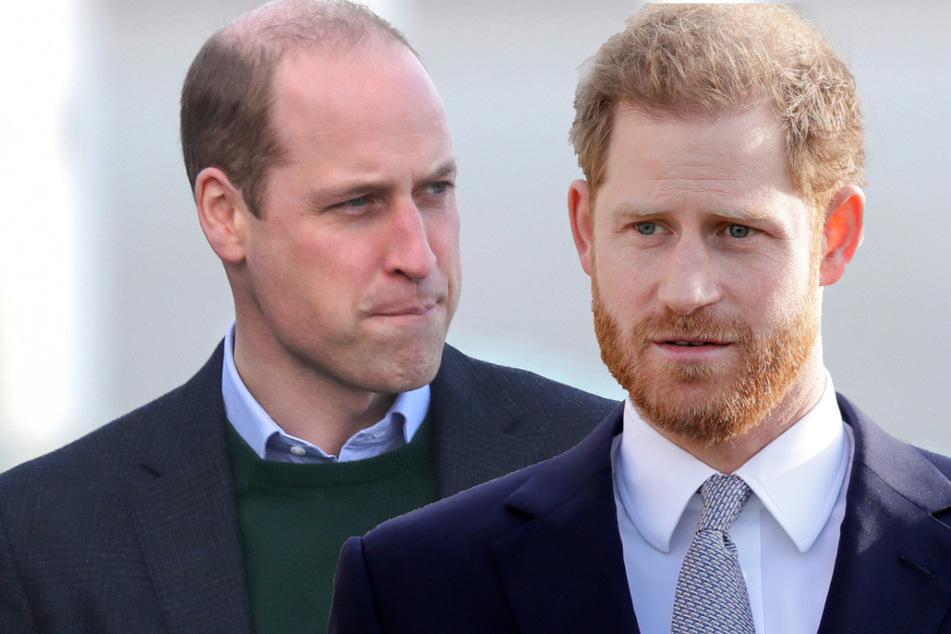 Harry und William: Wurde die Versöhnung der Royals abgebrochen?