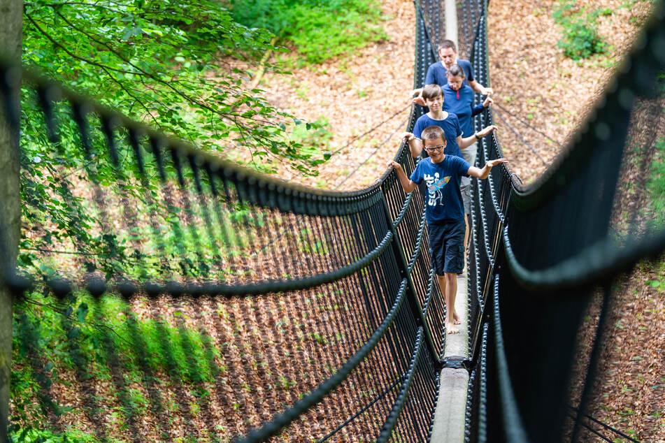Touristen gehen im Barfußpark in der Lüneburger Heide über eine Hängebrücke.