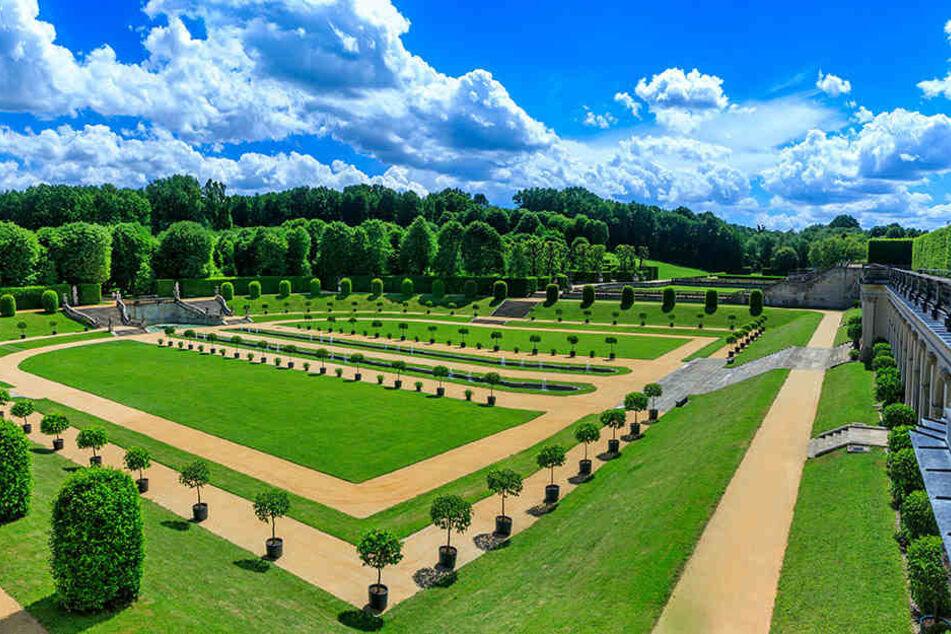 Der Barockgarten Großsedlitz erstrahlt in neuem Glanz und zog deutlich mehr Besucher an.