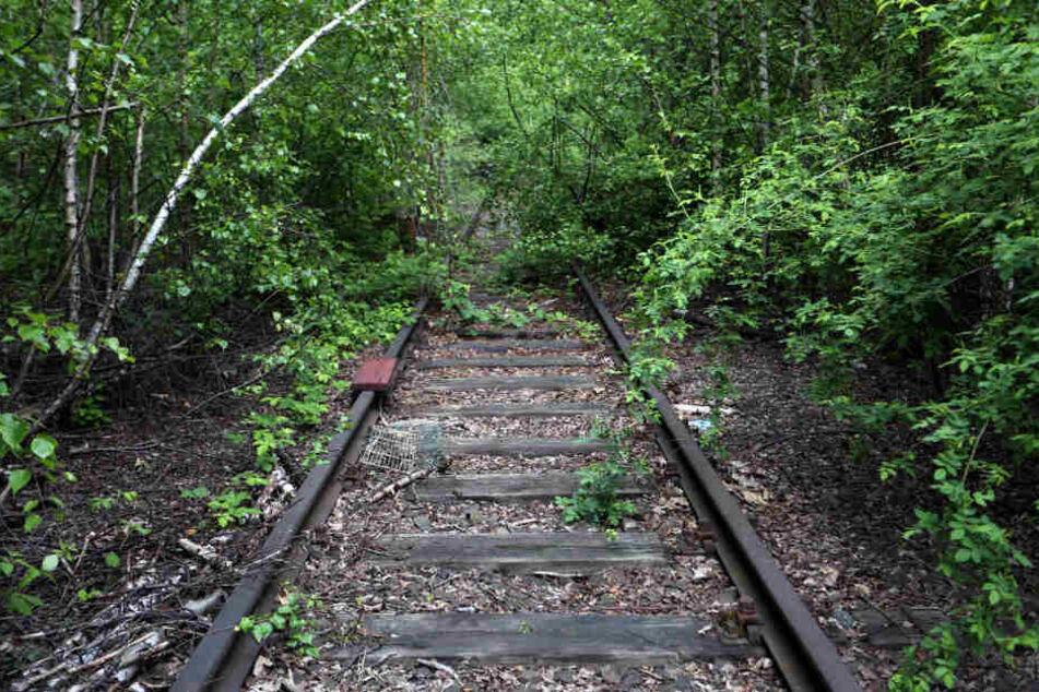 Die Gleise werden zurzeit nicht befahren (Symbolfoto).