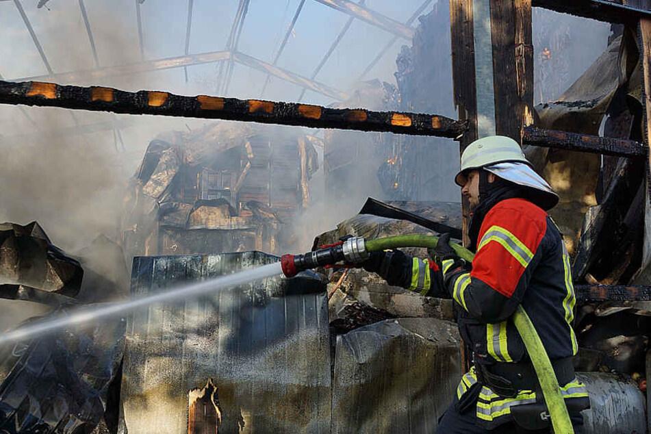 Feuerwehr kämpft gegen Großbrand in Obsthalle