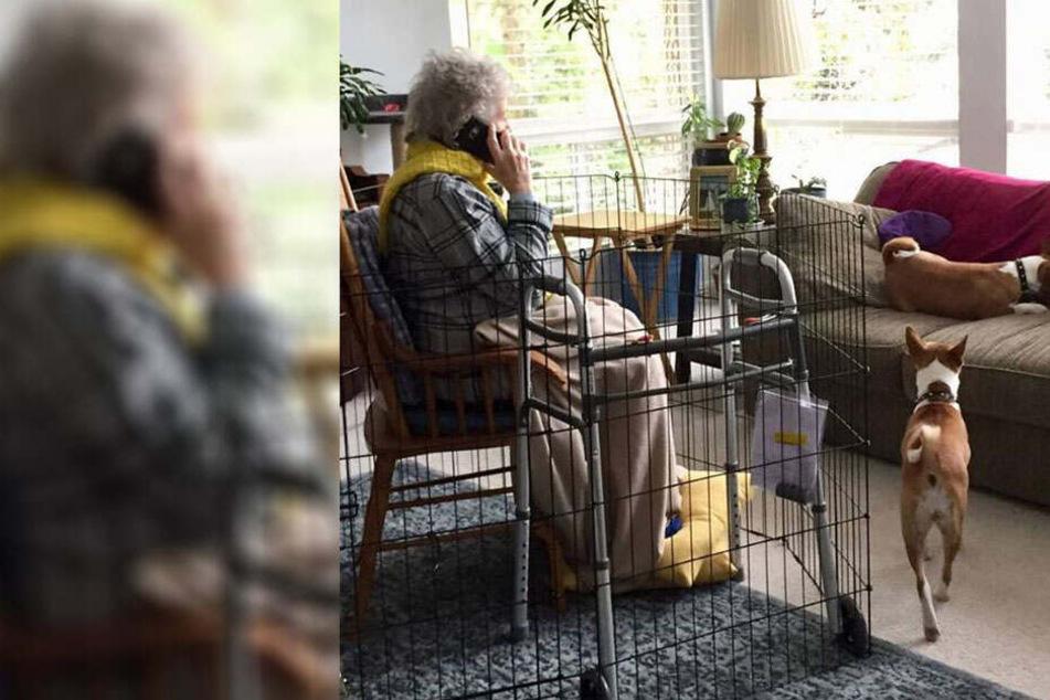 Enkelin sperrt ihre Oma in einen Käfig und erntet dafür heftigen Shitstorm
