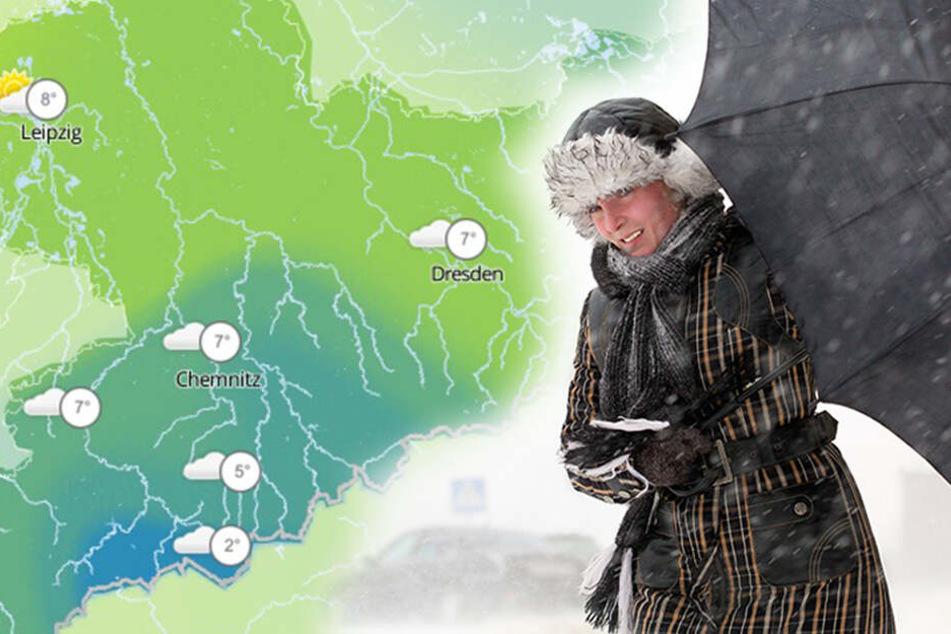 Temperatursturz, Frost, Schnee! Ungemütlicher Frühlingsanfang in Sachsen
