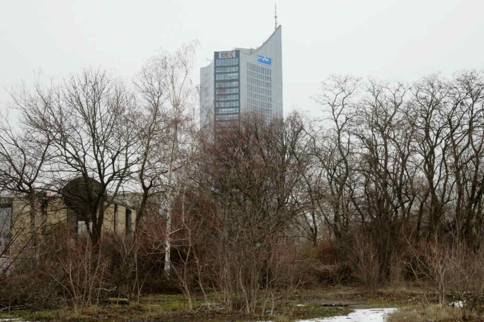 85 Hektar Lebensraum vernichtet: So brutal betoniert Leipzig seine grüne Lunge zu