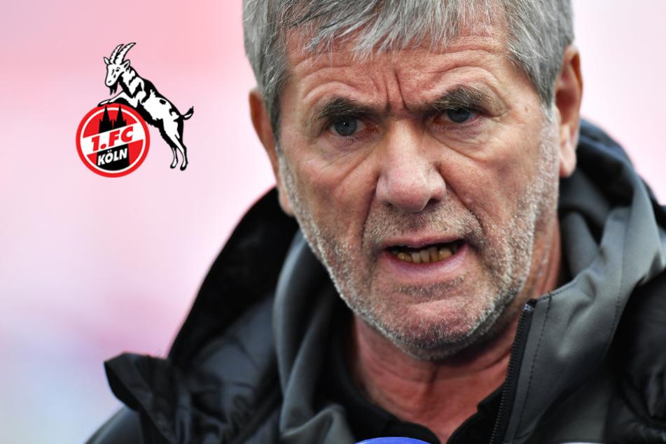Rassismus-Lapsus! Wollte FC-Coach Funkel hier wirklich das N-Wort sagen?