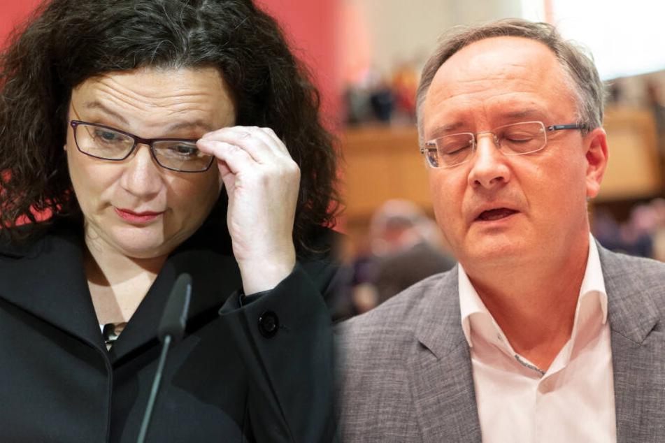 Beben bei der SPD! Vorsitzender bedauert Nahles-Rücktritt