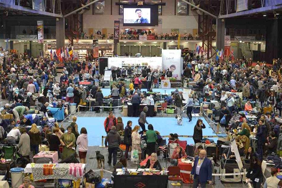 Zahlreiche Besucher auf der Messe.