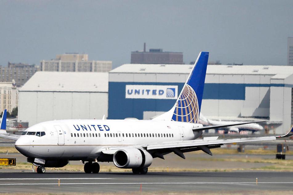 In einer United-Airlines-Maschine wollte eine Frau gern neben einem Vogel sitzen.