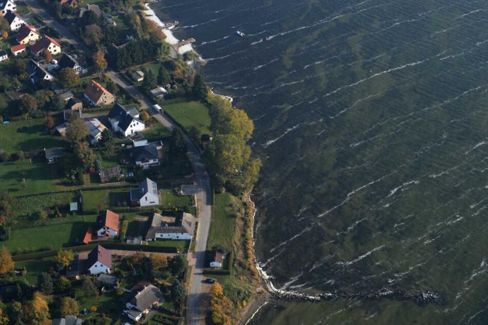 Auch vor der Insel Rügen tauchen die Blaualgen auf, sind dort aber noch nicht zur Gefahr geworden.