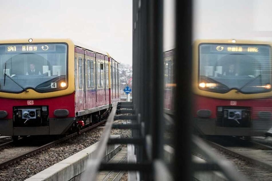 Die Ringbahn fahren zwischen Gesundbrunnen und Beusselstraße für vier Wochen nicht.