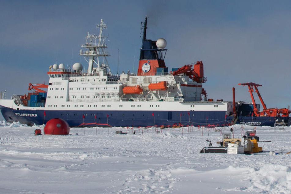 Das Forschungsschiff hat sich an einer Eisscholle festfrieren lassen.