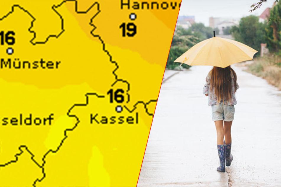 Auf Sonne folgt Regen: Nur kurzes Sommer-Gastspiel in OWL