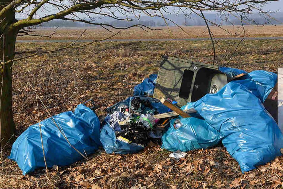 Nur in zwei Kreise in die Zahl von illegalen Müllentsorgungen gestiegen.
