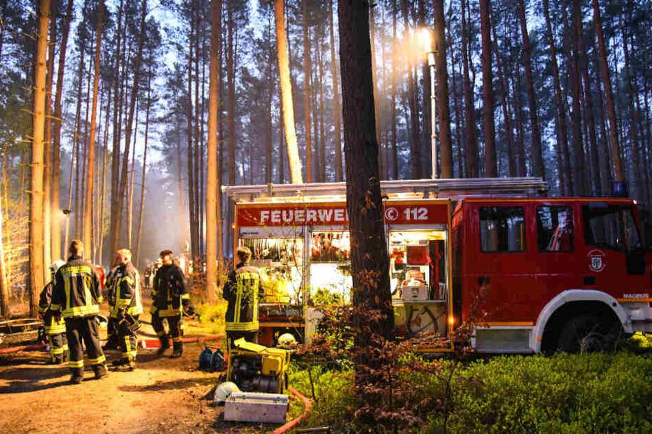 Mehrere örtliche Feuerwehrkräfte wurden hinzugerufen.