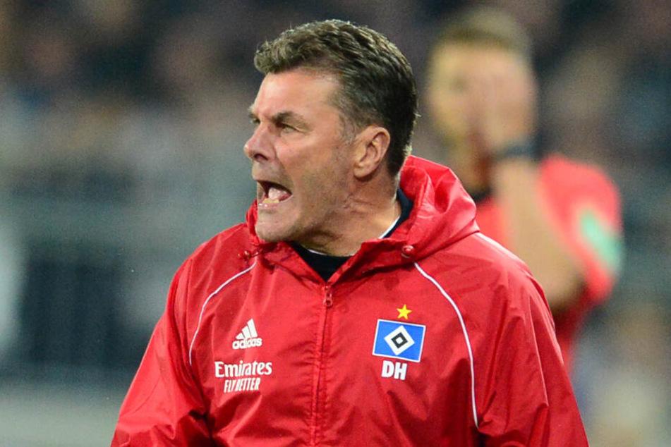 HSV-Trainer Dieter Hecking sieht seine Mannschaft in der Favoritenrolle.