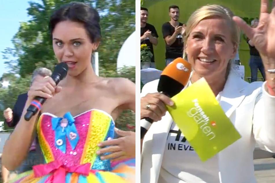 "Fernsehgarten mit Schlager-Finale: Fan will Kiwi ""die Drogen"" wegnehmen"