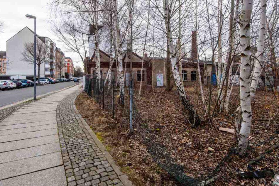 Auf einem brachliegenden Grundstück in der Matthesstraße wurde eine 32-Jährige von einem Mann aus Nigeria brutal vergewaltigt.