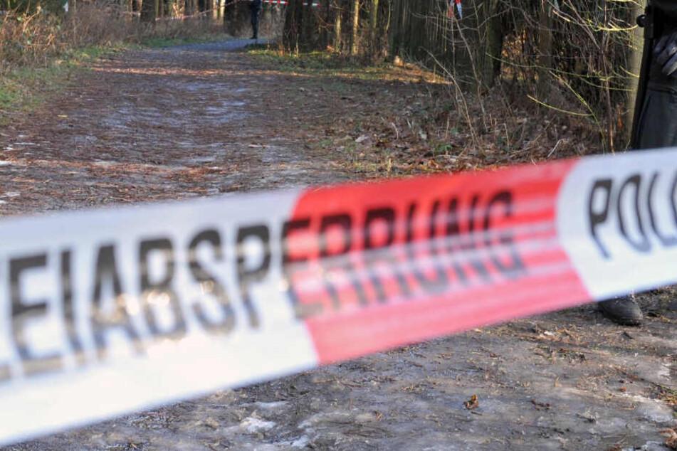 Schreckliche Tragödie? Leiche in Wald gefunden