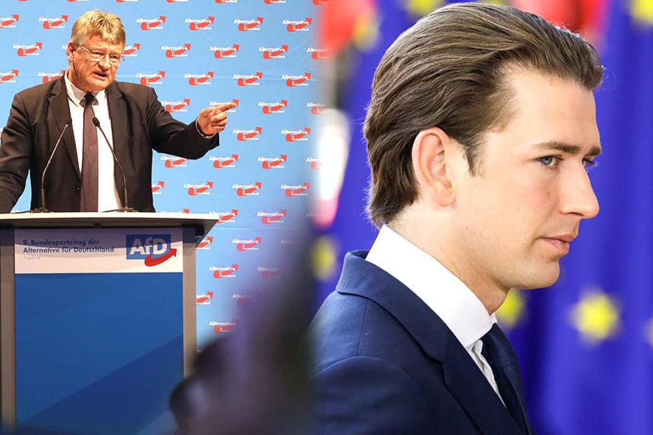 AfD-Meuthen sieht Österreich-Kanzler als Verbündeten