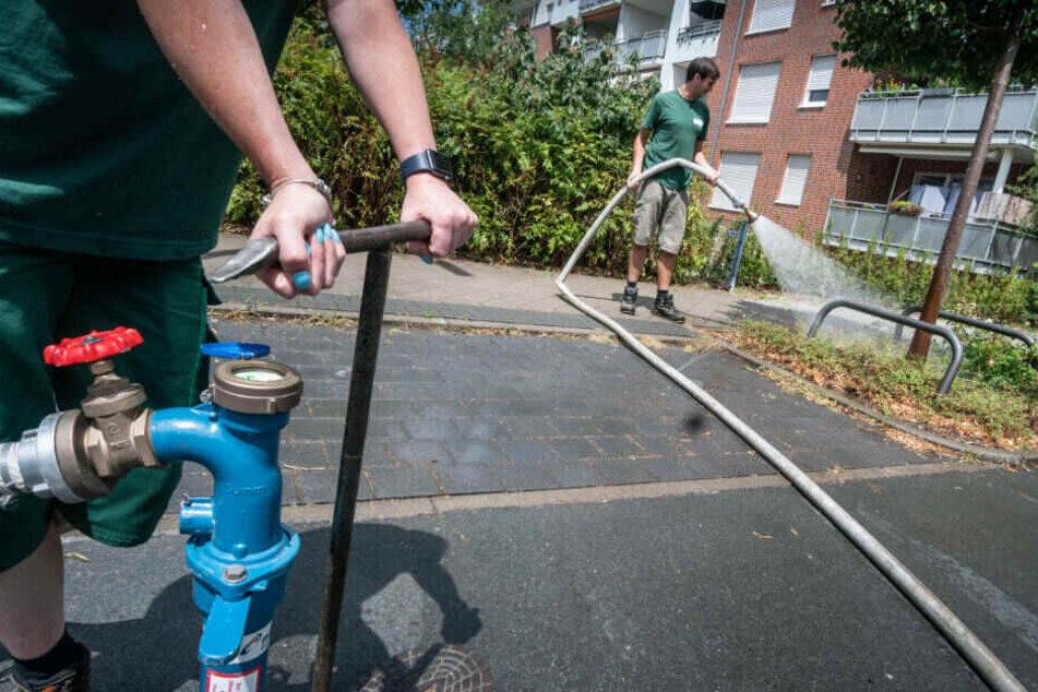 In Dürrephasen Stadt-Bäume gießen oder Wasser sparen? Mit dieser Frage haben sich Umweltschützer in Hessen beschäftigt.
