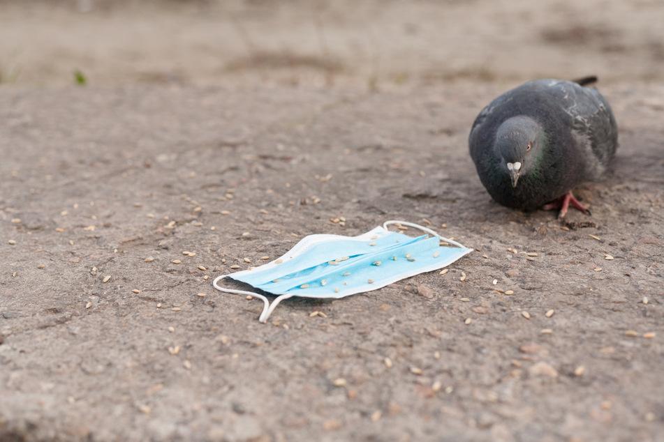 Gefahr auch für Tiere: Vögel können sich in den Bändern verheddern.