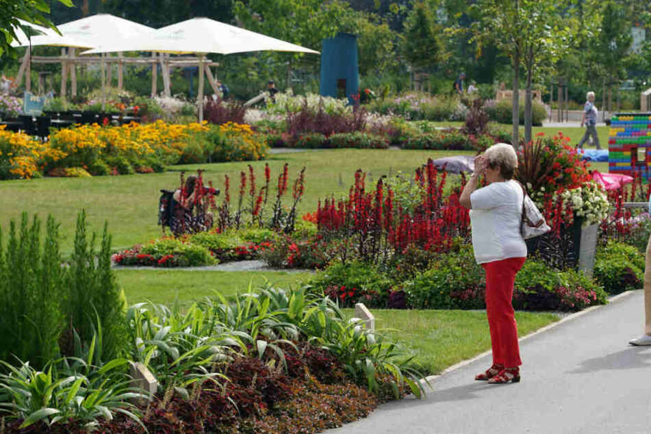 Die bunten Blüten der Landesgartenschau in Frankenberg zogen Tausende Besucher an. Jetzt werden viele Beete eingeebnet.