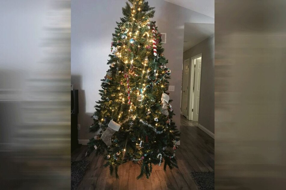 Bvb Weihnachtsbaum.Hier Stimmt Doch Was Nicht Alle Suchen In Diesem Weihnachtsbaum