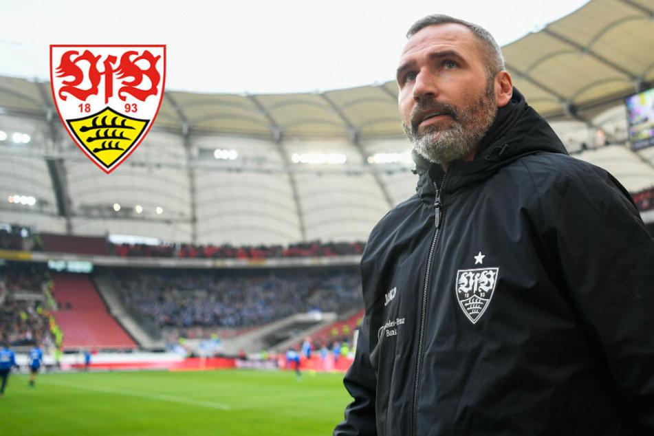 """VfB-Coach Walter vor Partie gegen Sandhausen: """"Müssen mit unserem Leben verteidigen!"""""""