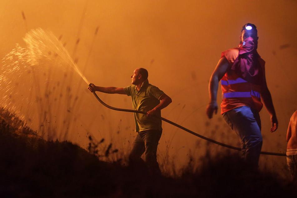 Die Menschen in Portugal kämpften gegen die Flammen.