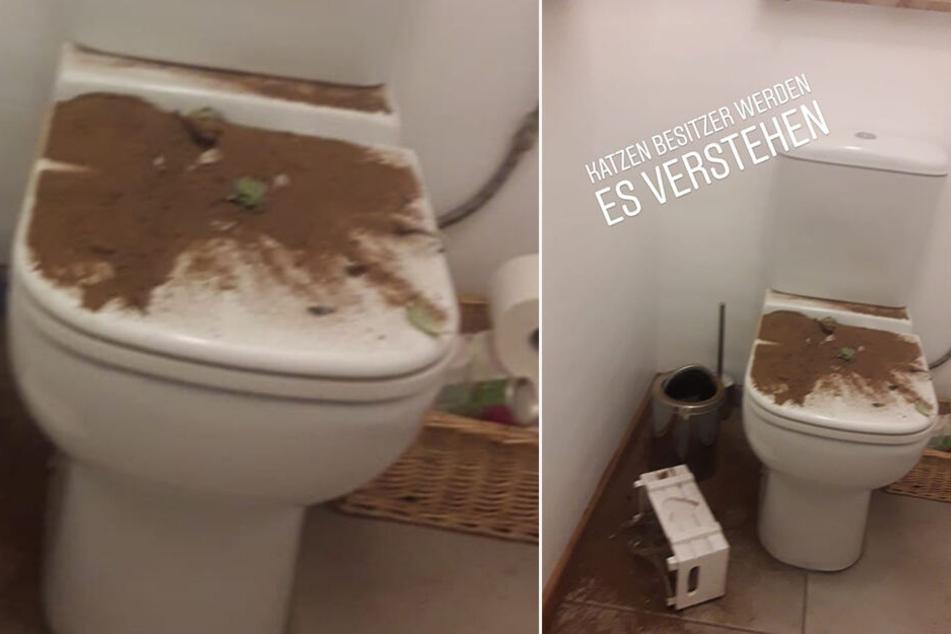 Oh je, da ist wohl jemand durchs Bad getobt und hat ein ziemliches Chaos hinterlassen.