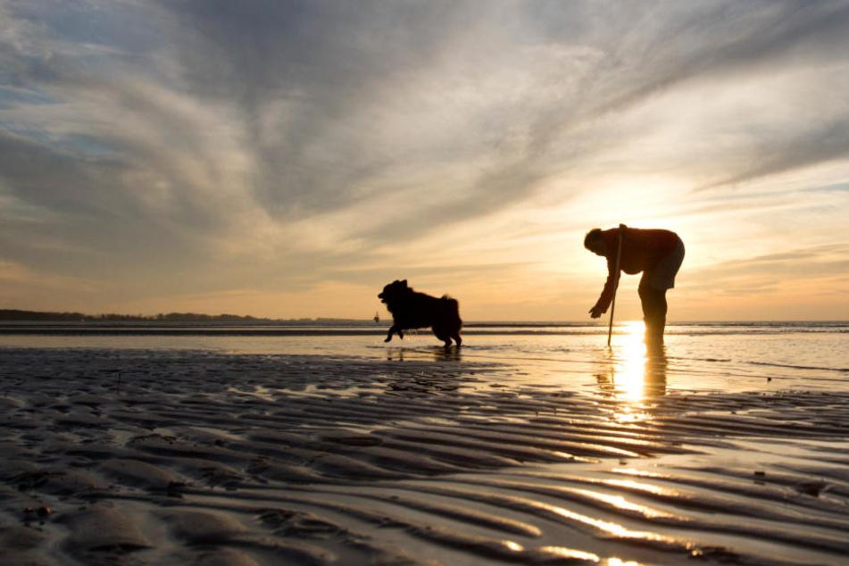 Eine Frau spaziert mit ihrem Hund im flachen Gewässer des Greifswalder Bodden.