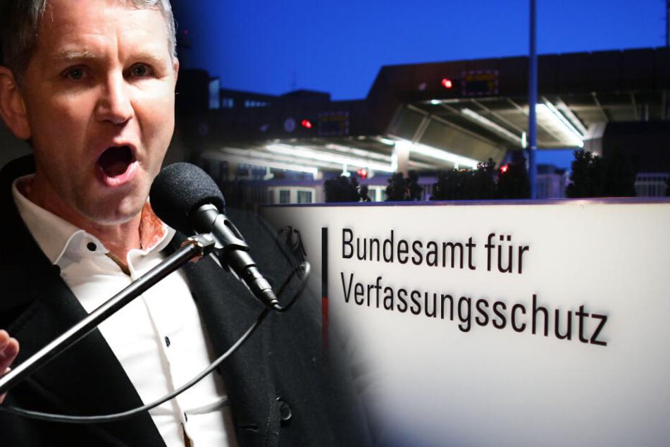 """Unter Beobachtung: So gefährlich ist der AfD-""""Flügel"""" um Björn Höcke"""