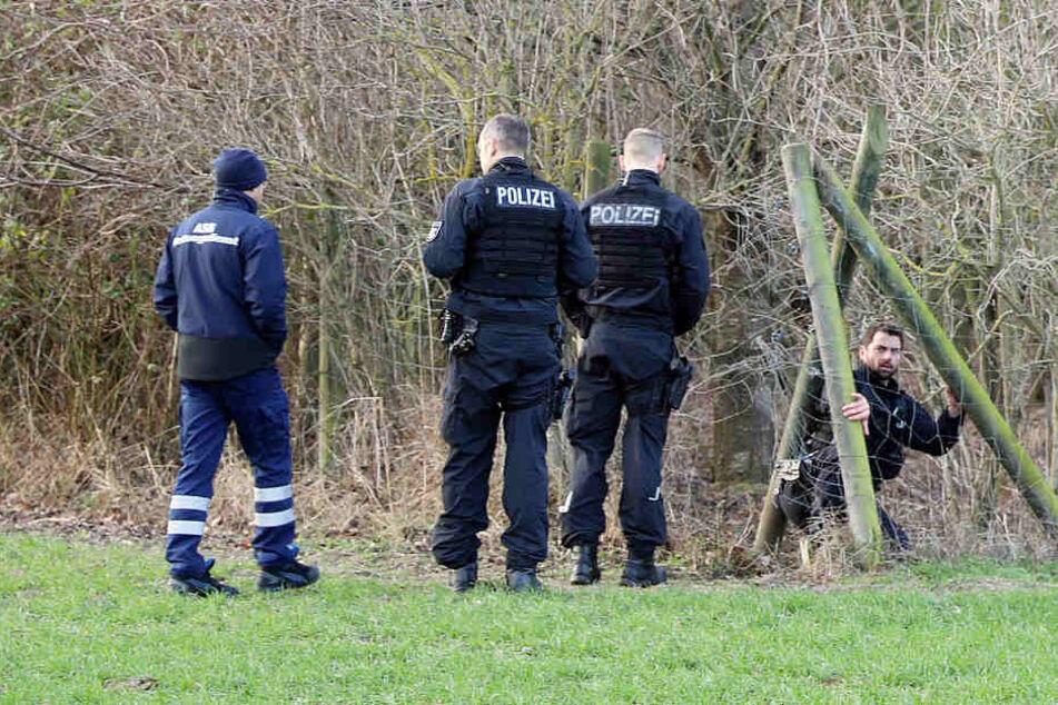 Die Vermisste wurde in diesem kleinen Waldstück in Rostock tot aufgefunden.