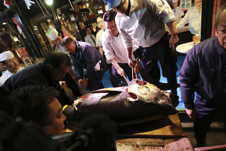 Dieser 212 Kilogramm schwerer Blauflossen-Thunfisch ist in Japan für den unfassbaren Preis von 74,2 Millionen Yen (rund 600.000 Euro) versteigert worden.