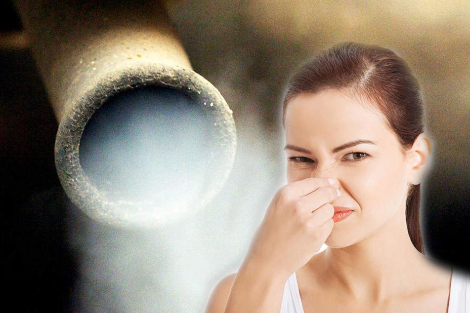 Feinstaub und Stickoxid belasten die Luft in der Messestadt. (Symbolbild)