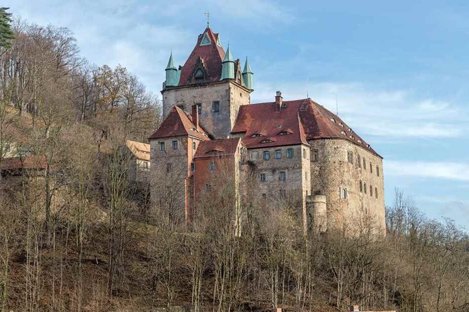 Thront magisch auf einem Felsen 380 Meter über dem Flusstal der Seidewitz: Wird auf Schloss Kuckuckstein bald wieder gezaubert?