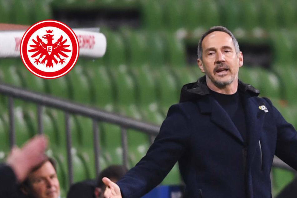 """""""Kragen geplatzt"""": Eintracht-Trainer Adi Hütter stinksauer auf Werder Bremen"""