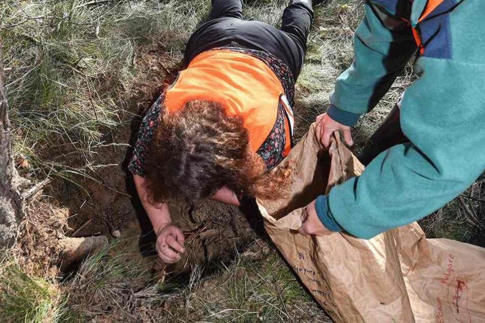 Christina Gräz gräbt ein Ameisennetz in unmittelbarer Nähe der A10 aus.