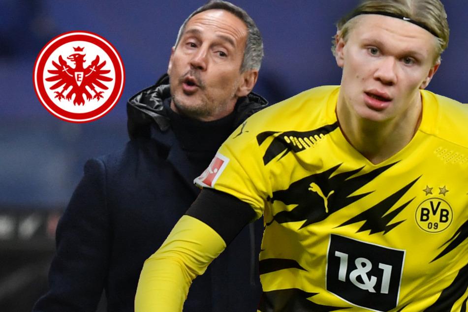 No Haaland, no Party? Eintracht will Schwächung des BVB eiskalt ausnutzen
