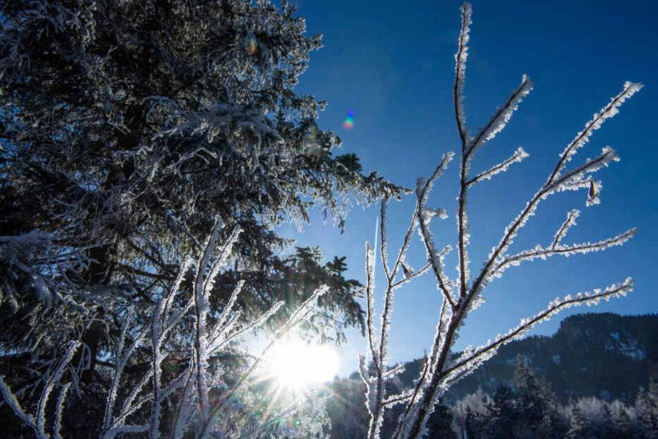 Bis zum Mittag sollte sie der Frost größenteils verzogen haben. (Symbolbild)
